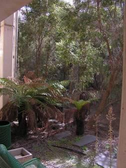Cameron gardens